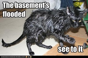 The basement's  flooded