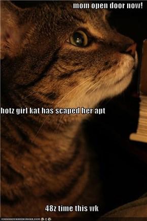 mom open door now!  hotz girl kat has scaped her apt  48z time this wk