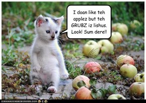 I doan like teh applez but teh GRUBZ iz lishus. Look! Sum dere!!