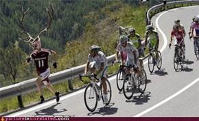 Deerman Is Faster Than Bicycles