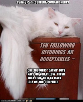 TEH  FOLLOWING  OFFURINGS  AR  ACCEPTABLES  ~