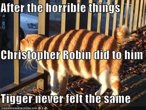 After the horrible things  Christopher Robin did to him Tigger never felt the same