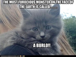 THE MOST FUROCIOUS MONSTER ON THE FACE OF THE EARTH IS CALLED..........