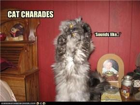 CAT CHARADES