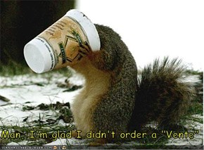 "Man, I'm glad I didn't order a ""Vente"""