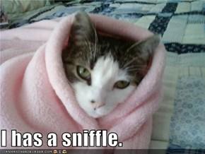 I has a sniffle.