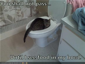 You shall not pass...  Until I see food in my bowl.