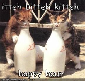 itteh bitteh kitteh  happy hour