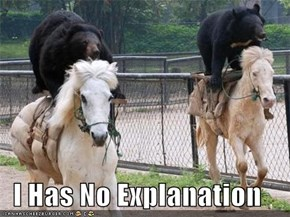 I Has No Explanation