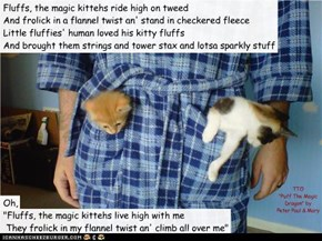 """Fluffs The Magic Kittehs"" (TTO ""Puff The Magic Dragon"" by Peter Paul & Mary)"