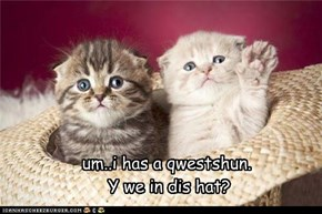um..i has a qwestshun.   Y we in dis hat?