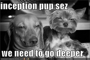 inception pup sez  we need to go deeper
