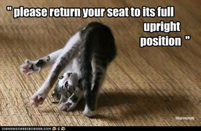 """ please return your seat to its full                                                                     upright                                                                        position  """