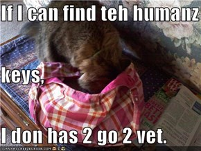 If I can find teh humanz keys, I don has 2 go 2 vet.