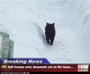 Breaking News - Hell freezes over; basement cat on the loose...