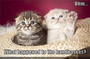 Uhm...  What happened to the handbasket?
