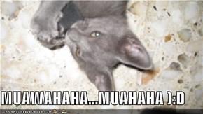 MUAWAHAHA...MUAHAHA ):D