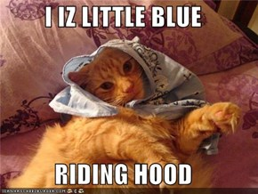 I IZ LITTLE BLUE  RIDING HOOD