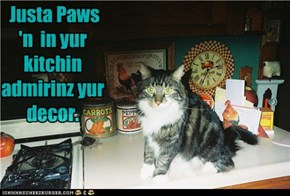 U has visit from de Kitchin Appreshiation Kitteh Clubz Rep.