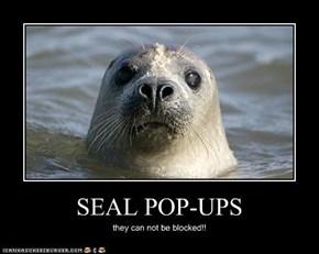 SEAL POP-UPS