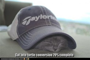 Cat into turtle conversion 79% complete