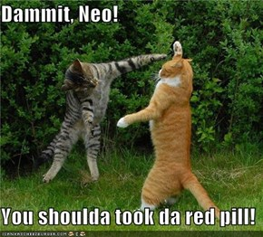 Dammit, Neo!  You shoulda took da red pill!