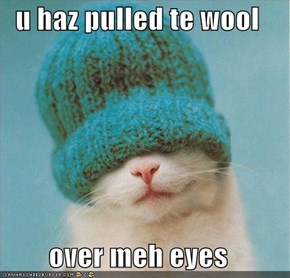 u haz pulled te wool  over meh eyes