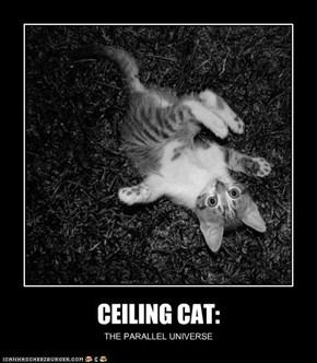 CEILING CAT: