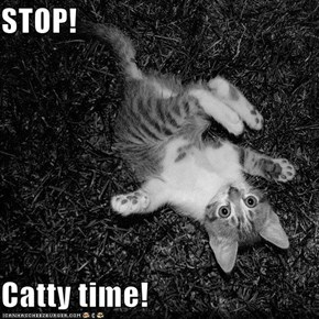 STOP!  Catty time!