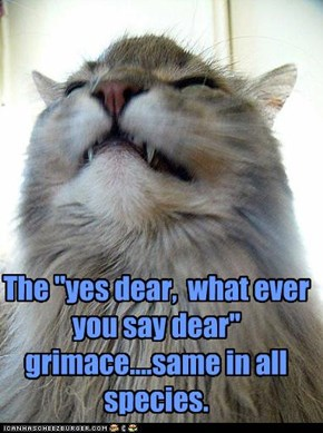 "The ""yes dear,  what ever you say dear""  grimace....same in all species."