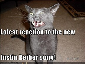 Lolcat reaction to the new Justin Beiber song!