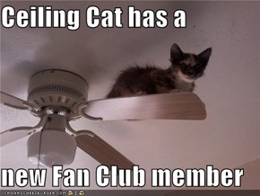 Ceiling Cat has a   new Fan Club member
