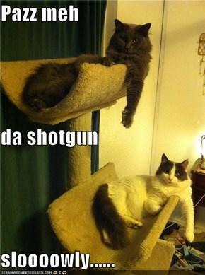 Pazz meh da shotgun sloooowly......