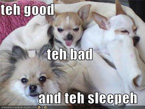 teh good teh bad and teh sleepeh