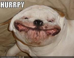 Smiley Goggie