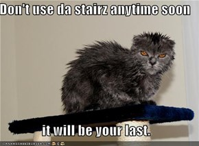 Don't use da stairz anytime soon  it will be your last.