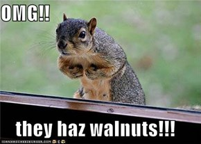 OMG!!  they haz walnuts!!!