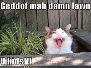 Geddof mah damn lawn  U kids!!!