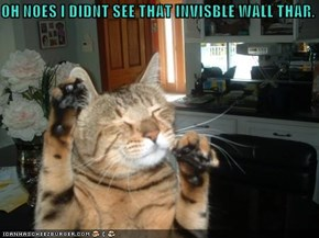OH NOES I DIDNT SEE THAT INVISBLE WALL THAR.