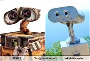 WALL·E Totally Looks Like turkish binocular