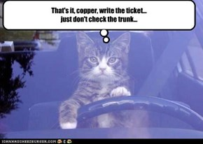 That's it, copper, write the ticket...  just don't check the trunk...