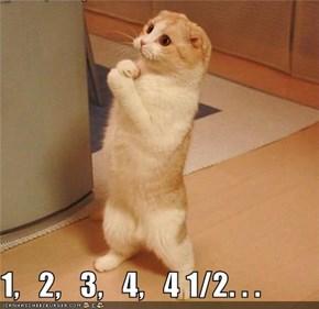 1,   2,   3,   4,   4 1/2. . .