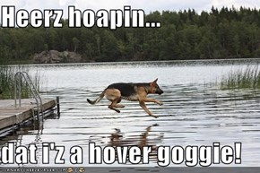 Heerz hoapin...  dat i'z a hover goggie!