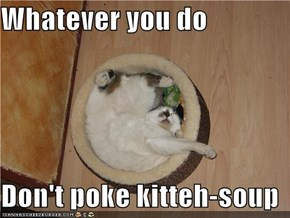 Whatever you do  Don't poke kitteh-soup