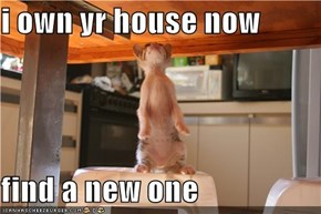 i own yr house now  find a new one