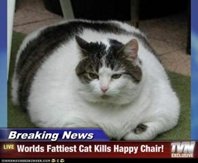 Breaking News - Worlds Fattiest Cat Kills Happy Chair!