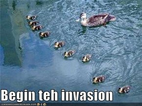 Begin teh invasion