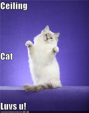 Ceiling Cat Luvs u!