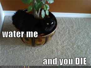 water me and you DIE