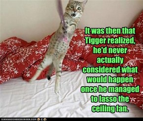 It was then that Tigger realized, he'd never actually considered what would happen once he managed to lasso the ceiling fan.